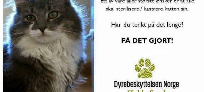 FÅ DET GJORT- KAMPANJE